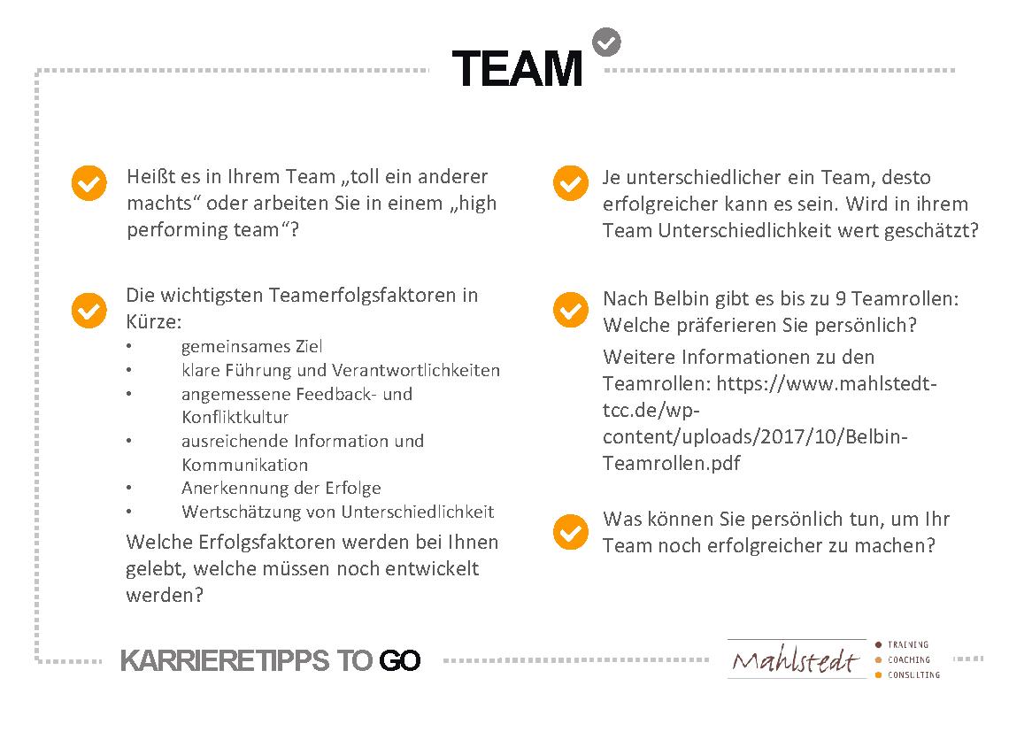 Team Erfolgsfaktoren